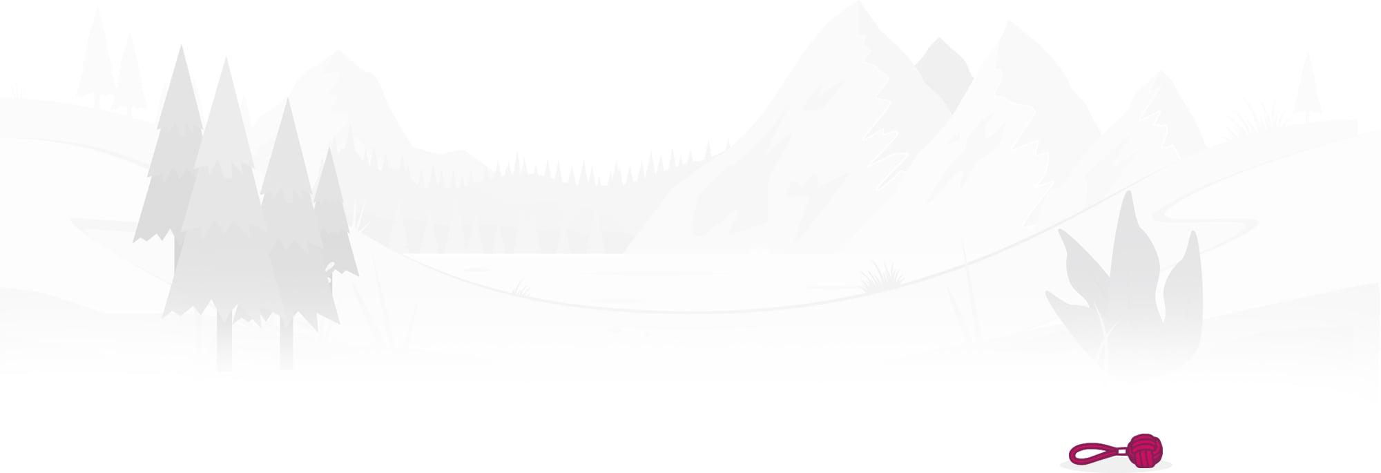 Wordpress websites Nottingham packages