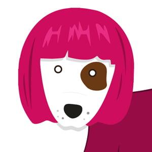 Meet The Team Puppy